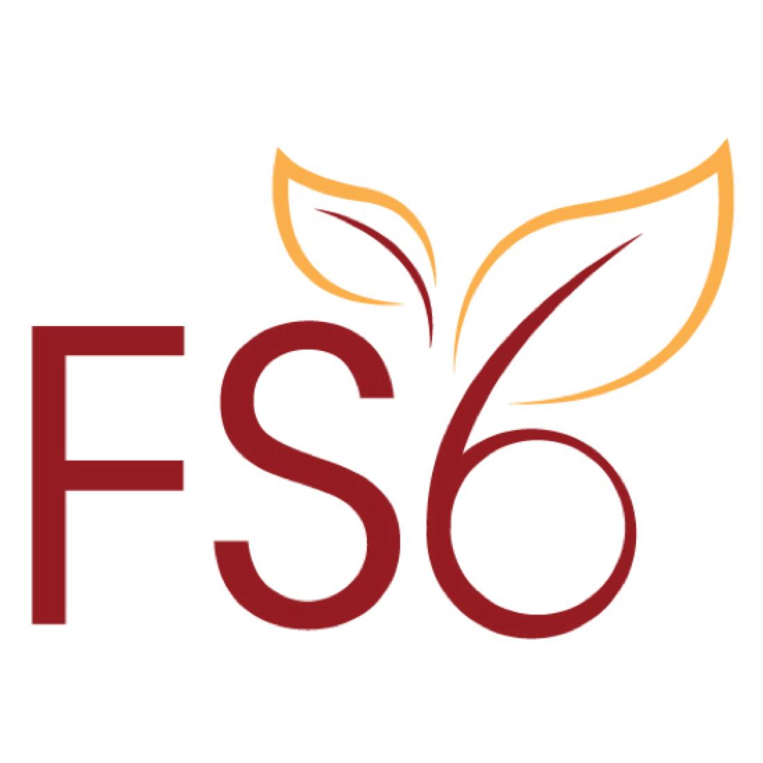 FS6Logo