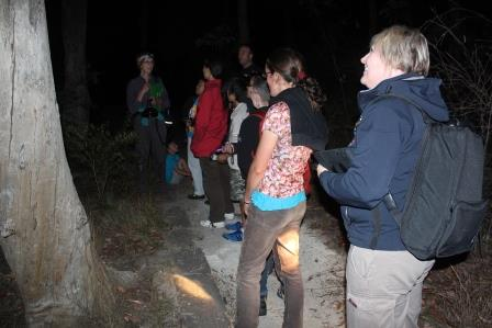Parramatta Night Nature Walk
