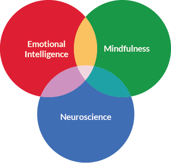 Mindfulness,Neuroscience Emotional Intelligence