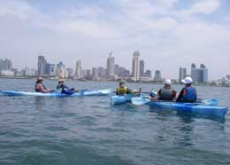 kayak san diego bay coronado island downtown
