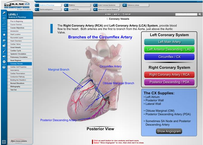 clinical case study crimes of the heart a case on cardiac anatomy crimes of the heart: a case study on cardiac anatomy sample on crimes of the heart: a case study on cardiac anatomy for only $1638 $139/page order now.