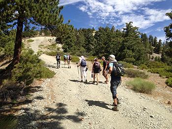 group hike mt baldy