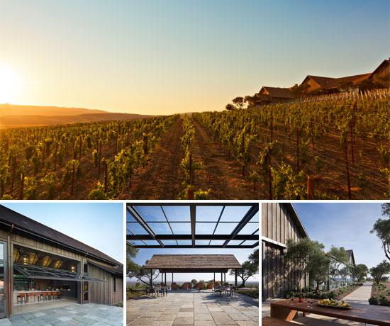 Rams Gate Winery - Summer Sunset