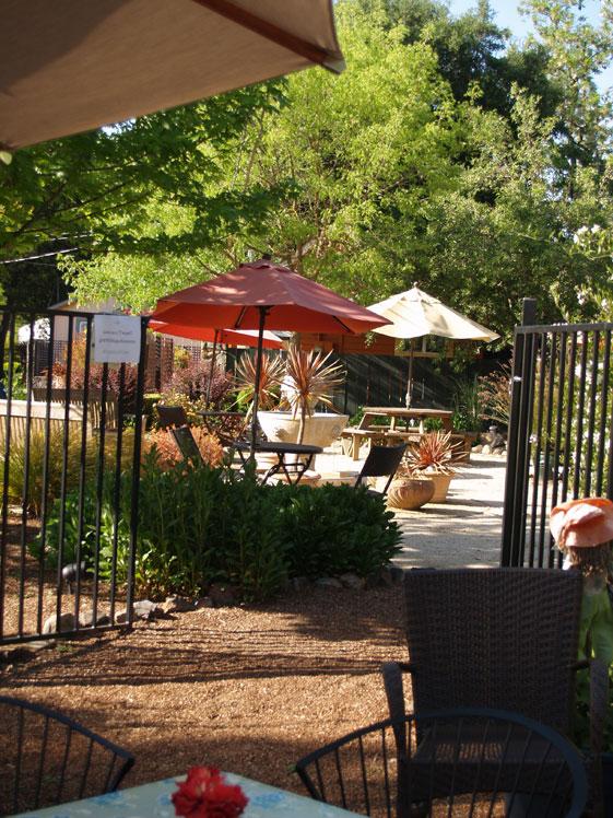 Sonomas Best garden