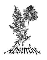 Make Your Own Absinthe  12/28