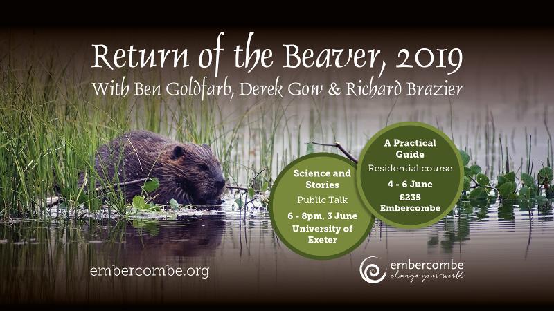 Return of the beaver