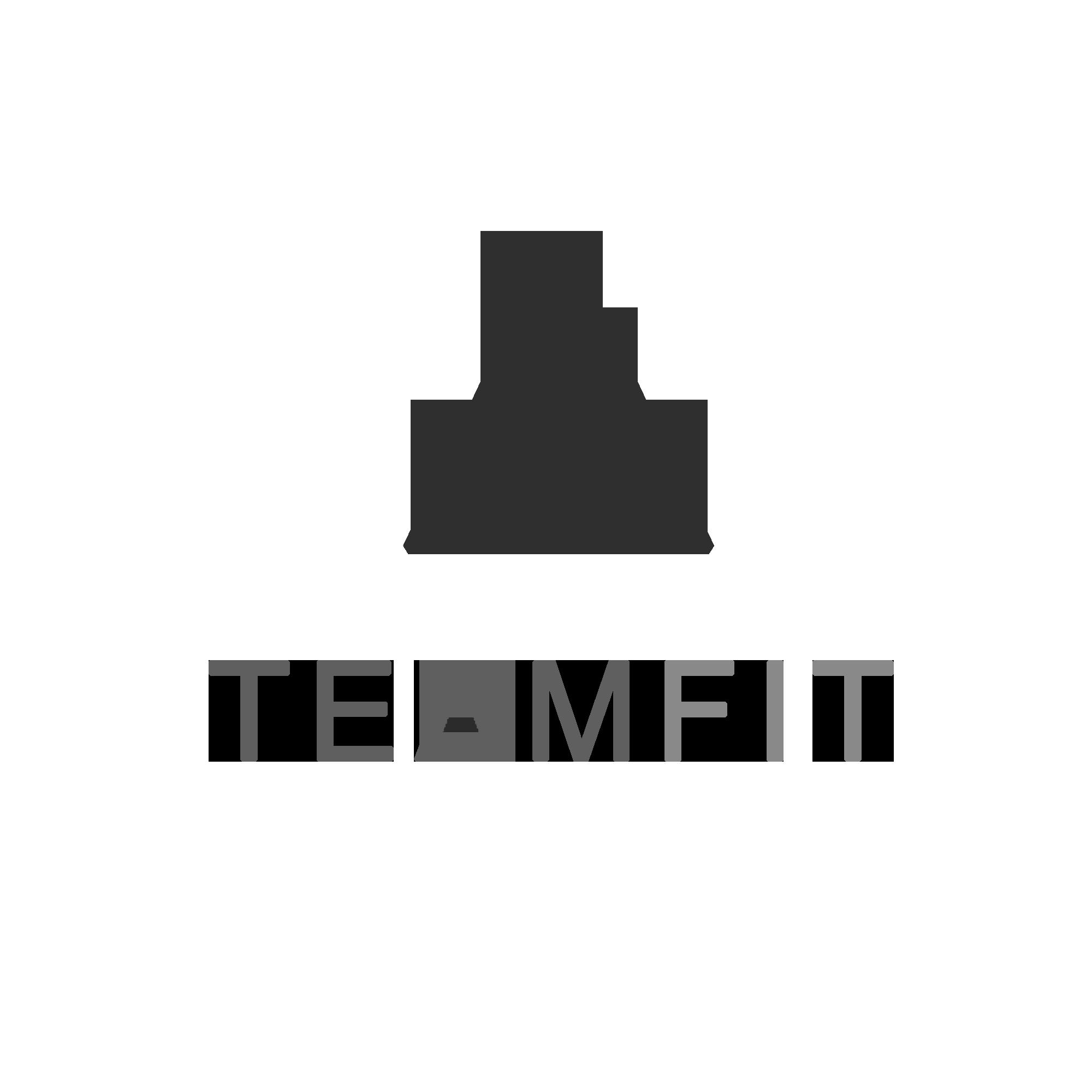 teamfit logo