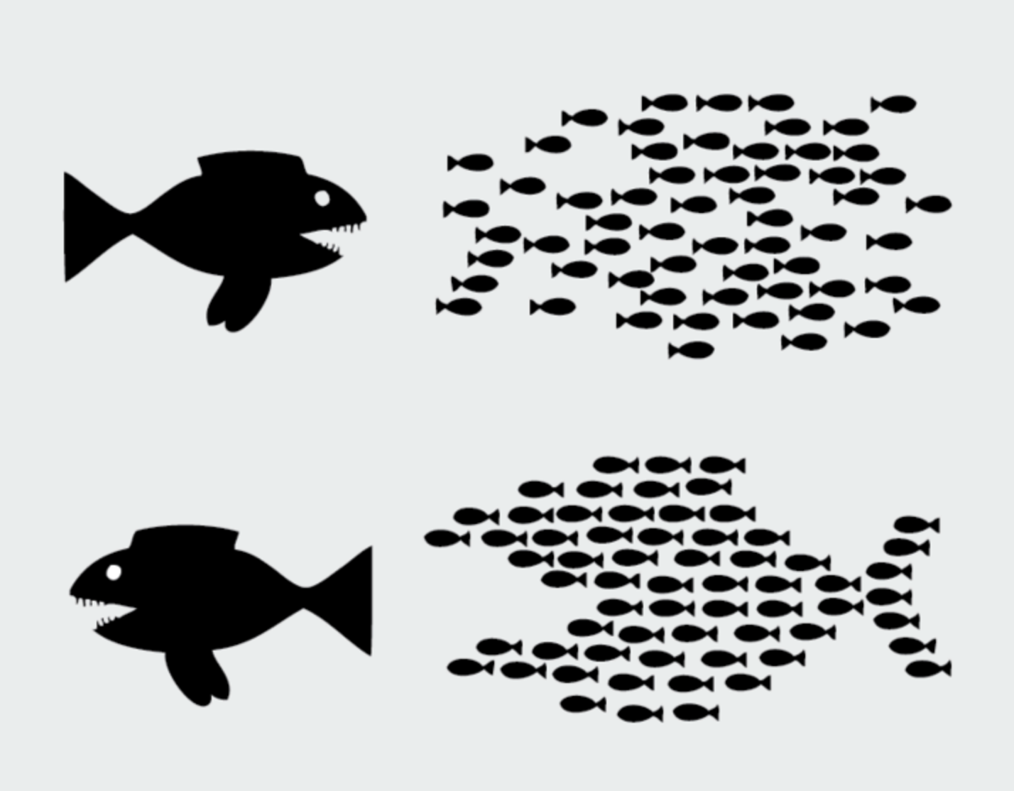 small-fish-big-wins
