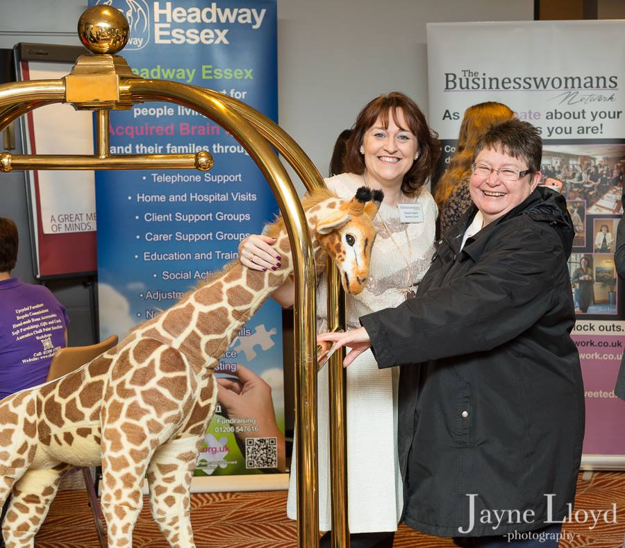 Susan Pattrick Dancing Giraffe The Business Womans Network