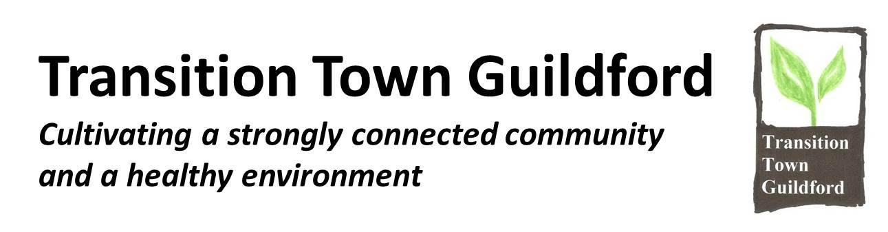 TTG logo