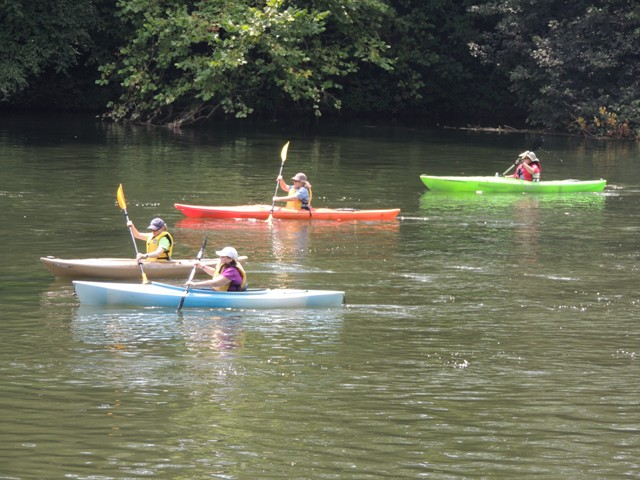 Paddlers during Pedal and Paddle