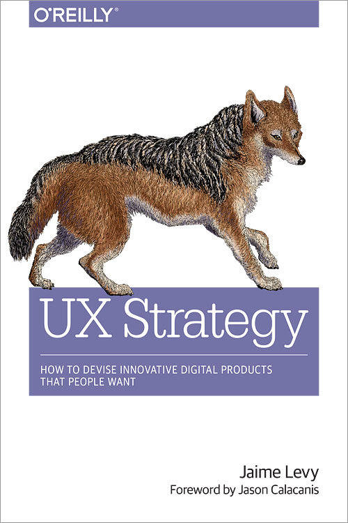 UX Strategy  by Jaime Levy Book Cover