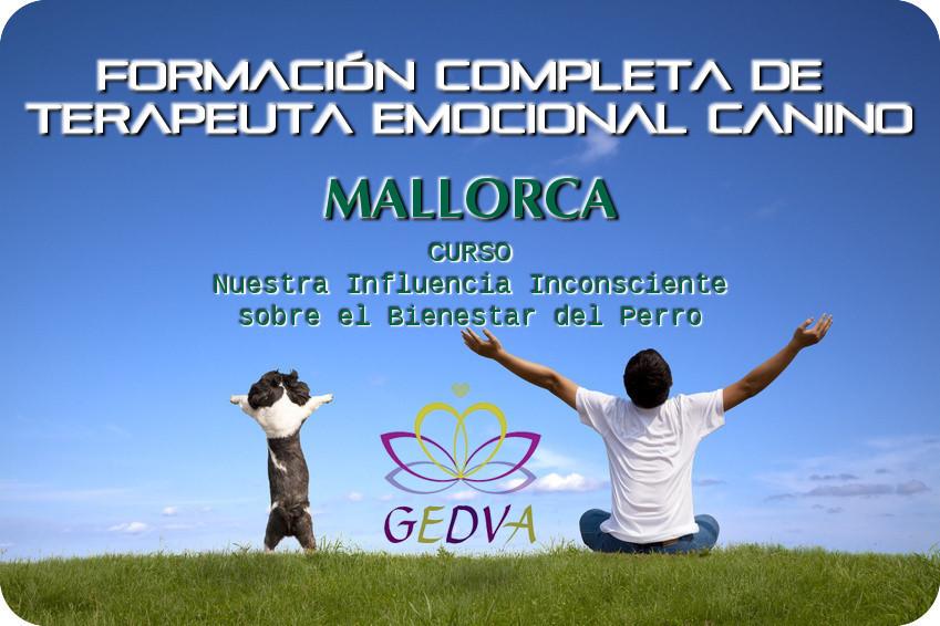 Formacion Terapeuta Emocional Canino Bienestar Perro Mallorca