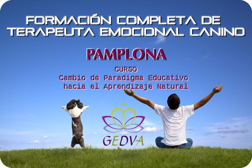 Formacion Terapeuta Emocional Canino Aprendizaje Natural Pamplona