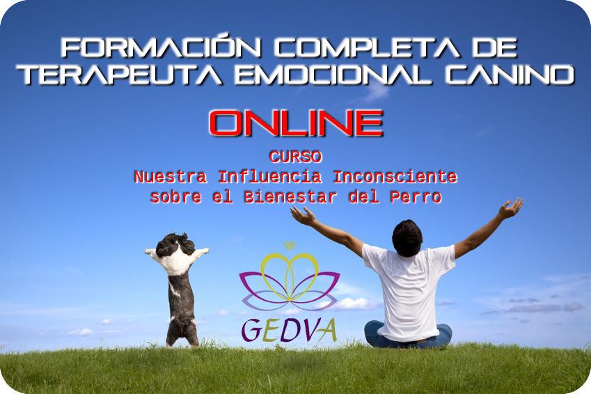 Formacion Terapeuta Emocional Canino Bienestar Perro Online