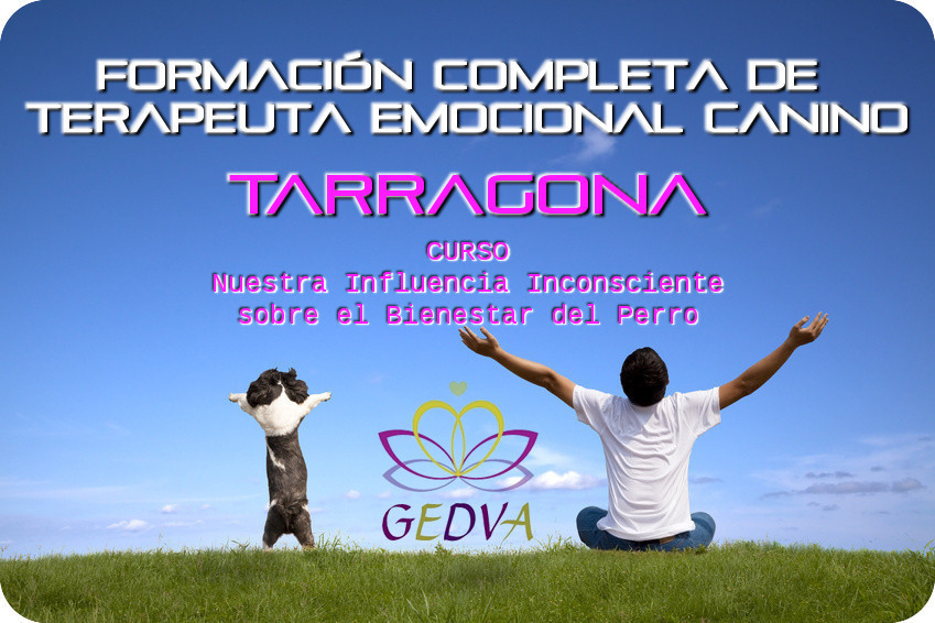 Formacion Terapeuta Emocional Canino Bienestar Perro Tarragona