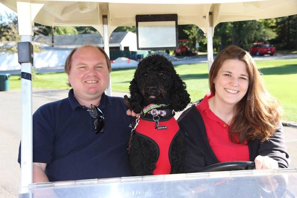Dog swinging golf club