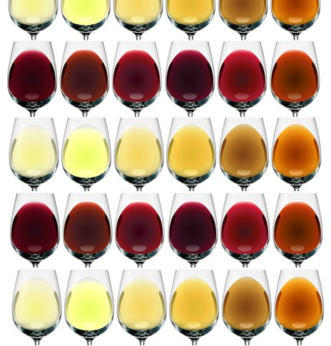 Wine Color Palette