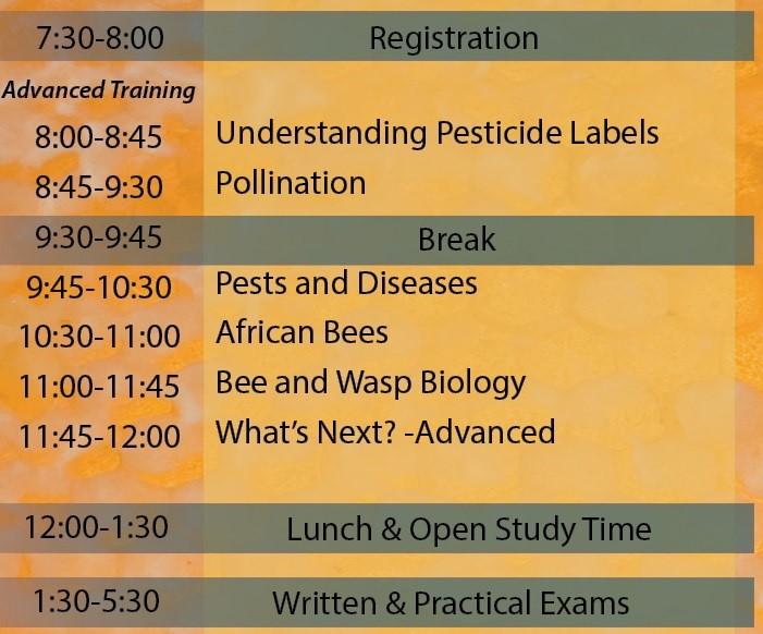 MBP Schedule
