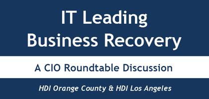 "CIO PANEL 2013 - ""IT Leading Business Recovery"""