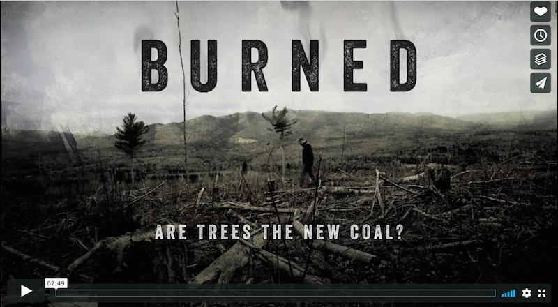 Burned Trailer