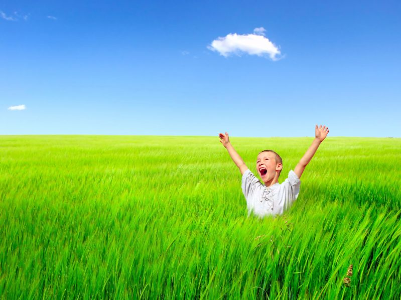 ecstatic boy in green field