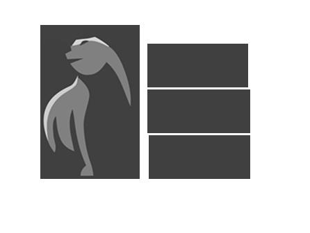 Little Bear Labs