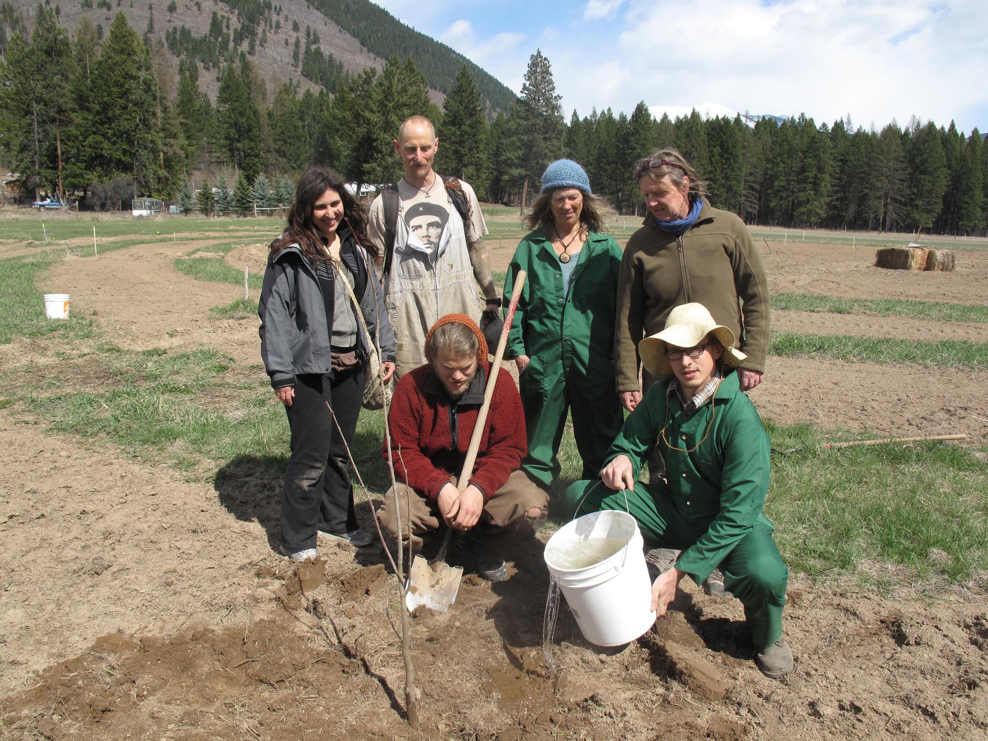 1 acre cold climate food forest near Cranbrook, BC