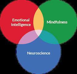 SIY = Emotional Intelligence + Mindfulness + Neuroscience