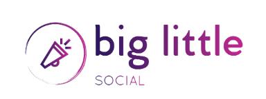Big Little social logo