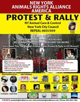 Protest & Rally to Build True No Kill Shelters in Queens & the...