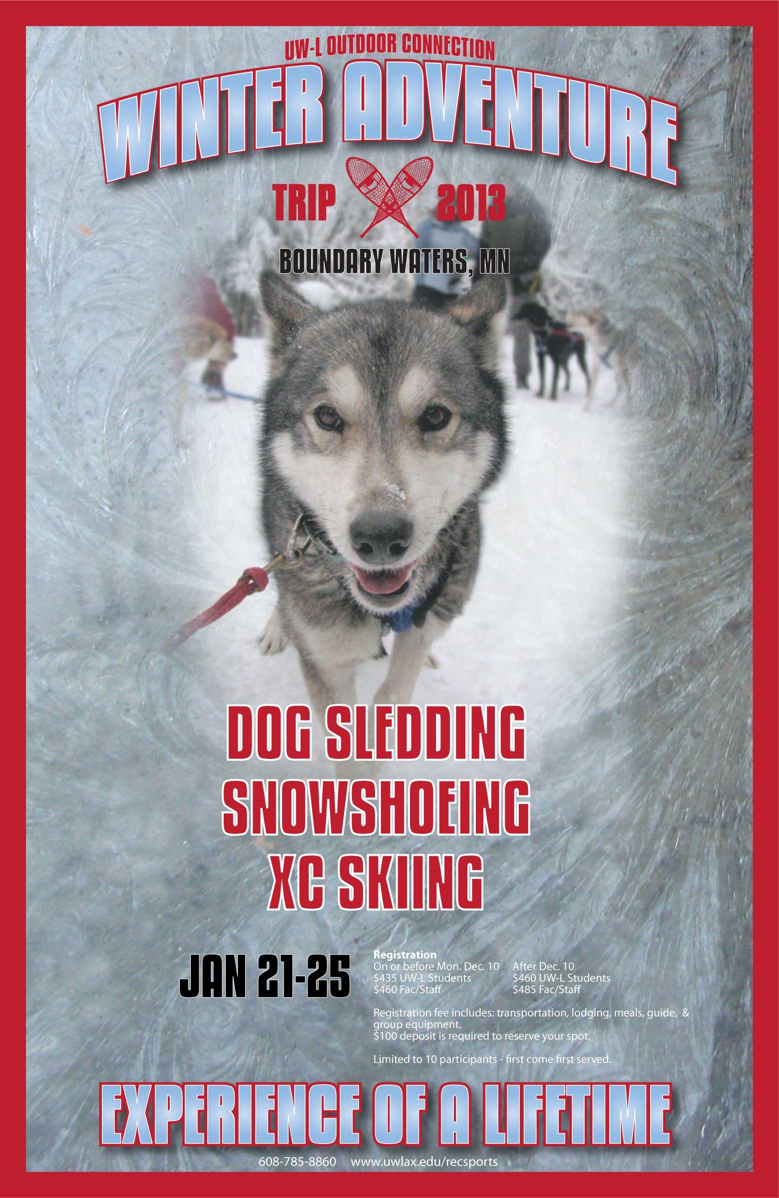 UWL Dog Sledding Poster