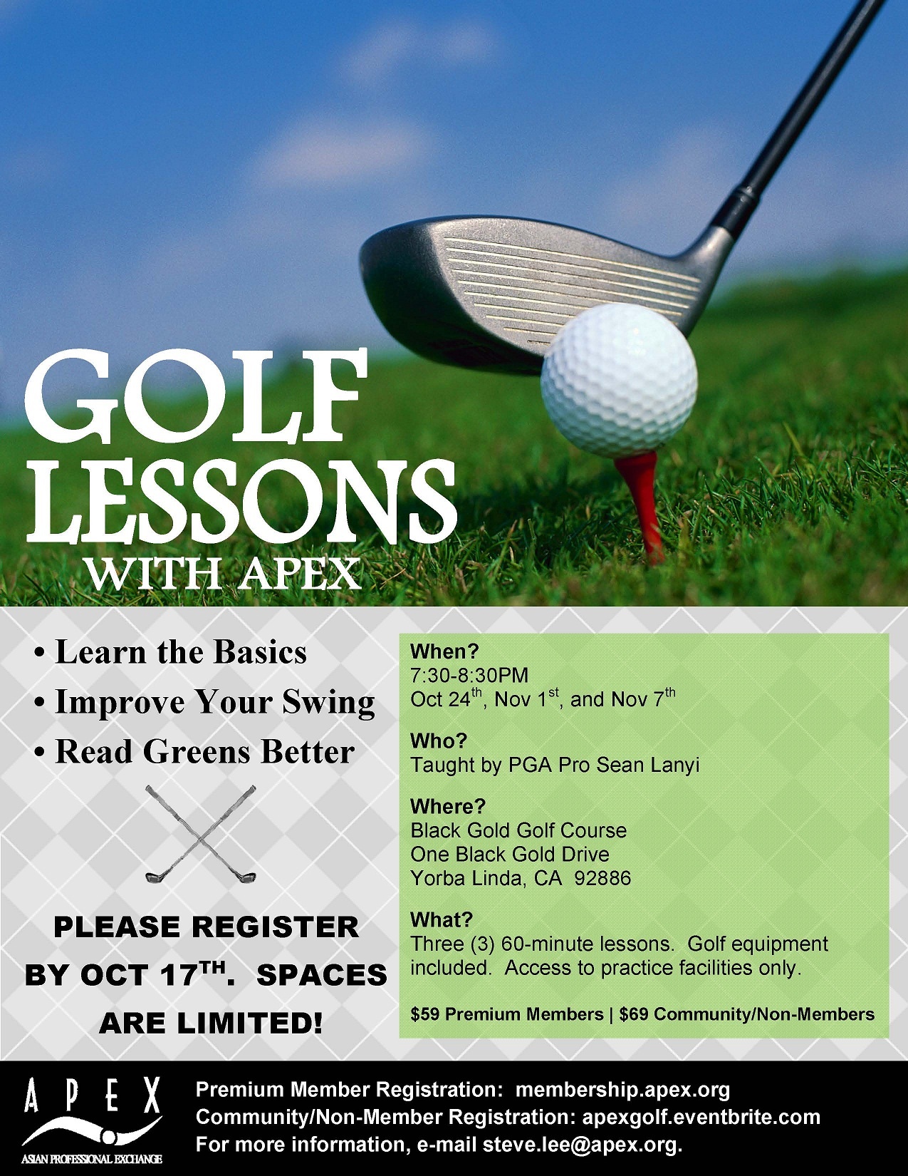 Golf Lessons with APEX
