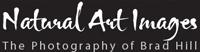 Natural Art Images - Brad Hill
