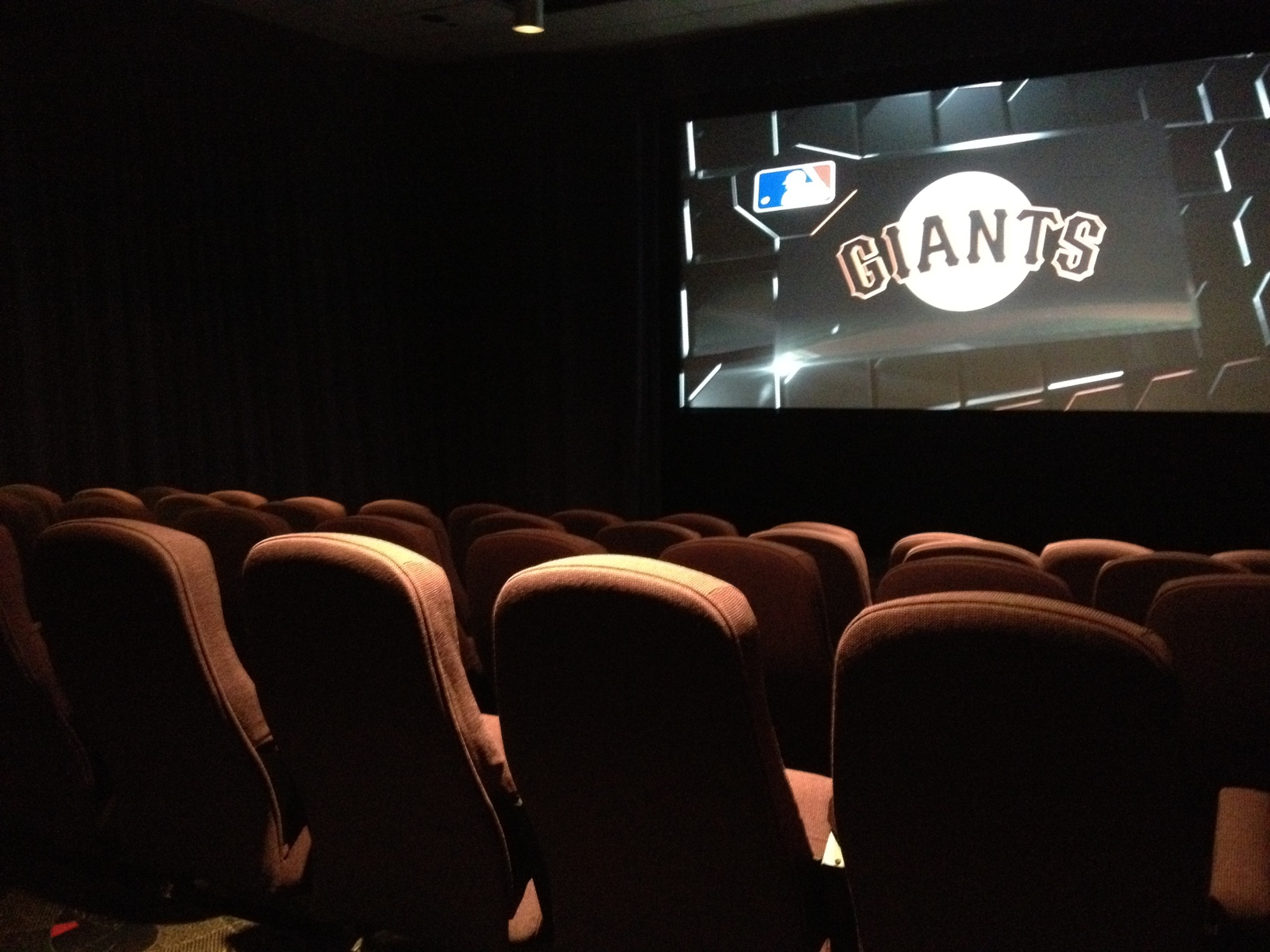Screening Room Picture