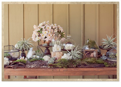 Savvy soiree at the vinery floral home and garden tickets Savvy home and garden