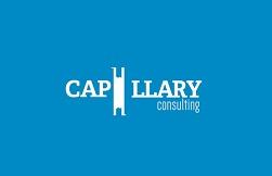 Capillary Consulting logo