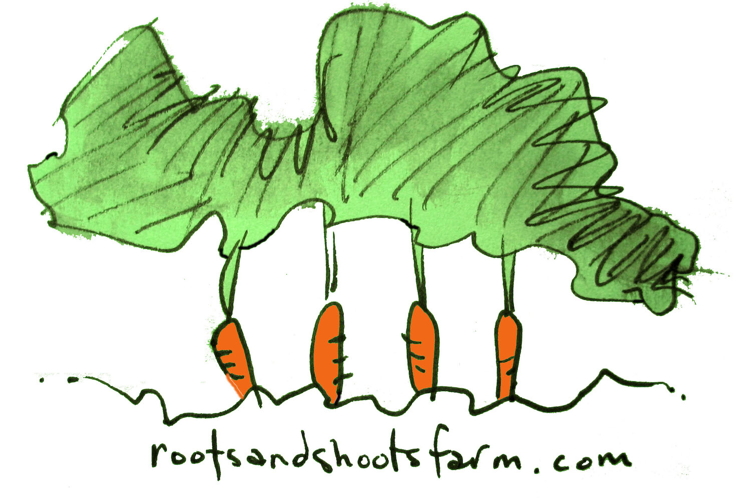 Roots and Shoots farm
