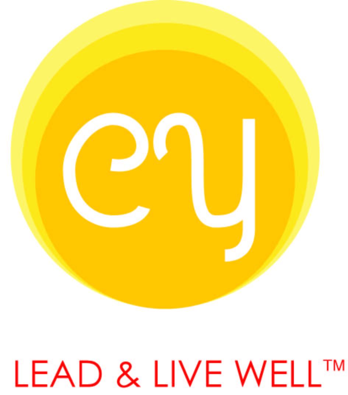 CMY Consulting LLC Logo