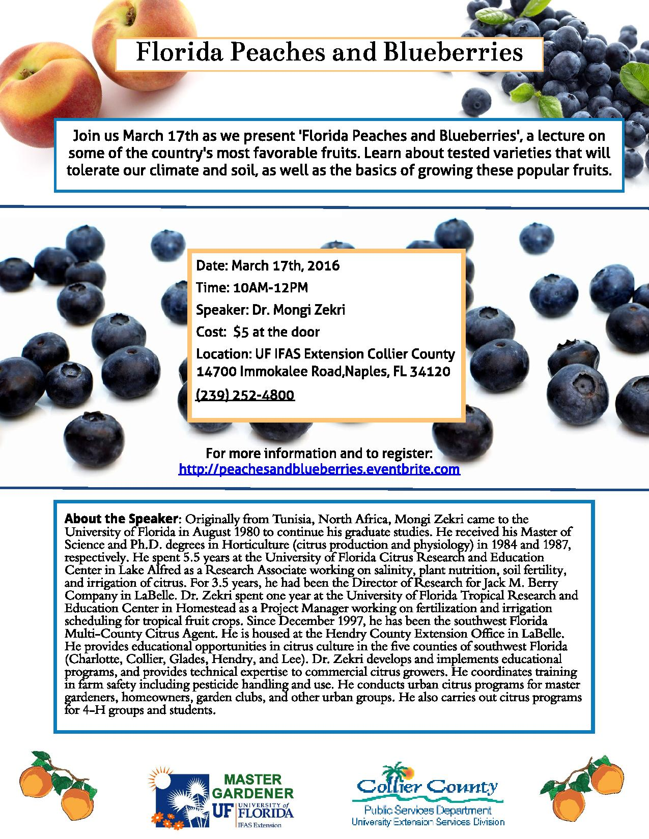 Peaches and Blueberries Flyer