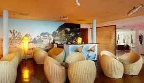 Standard Cactus Lounge