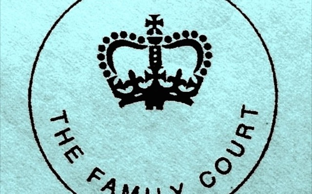 Family Courts image