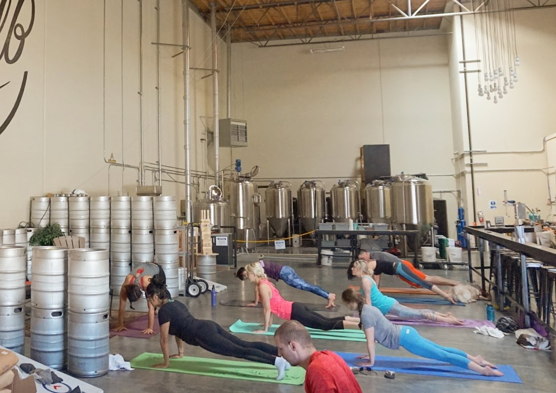 downward grog brewery yoga scholb south bay
