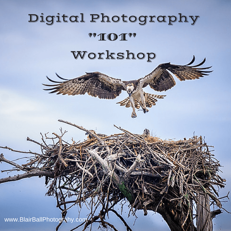 digital photography workshop tickets