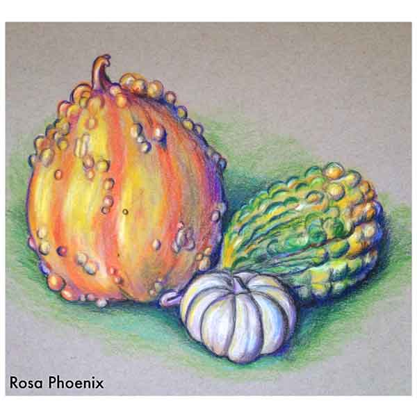 gourds colored pencil drawing by Rosa Phoenix