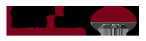 UMN Program in Health Disparities Research's Wordmark