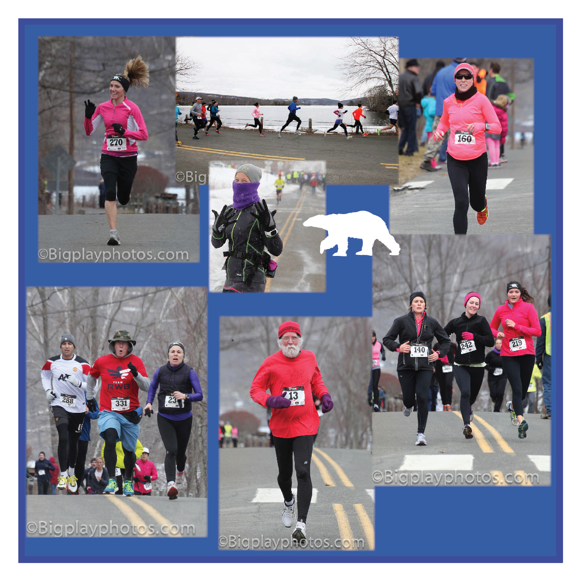 Polar Bear Runners Collage