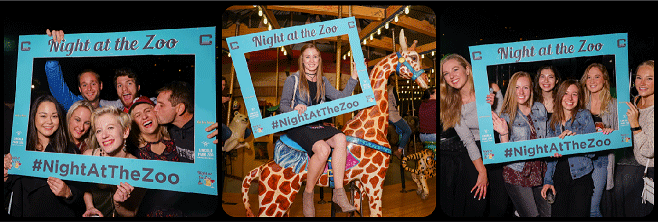 Night at the Zoo Picture Collage