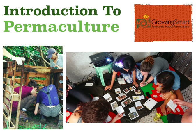 introduction to permaculture growingsmart