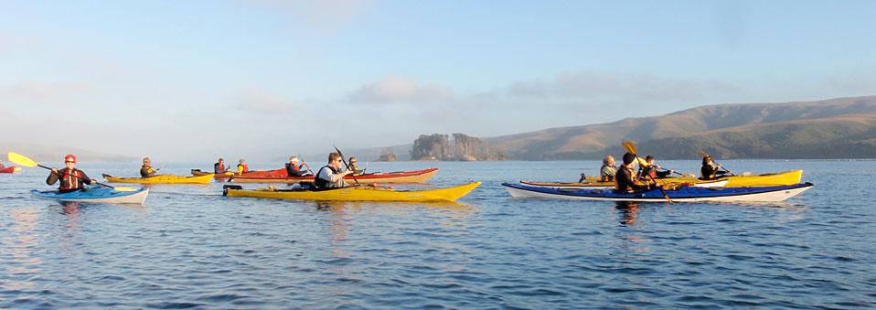 Kayaks on Tomales Bay